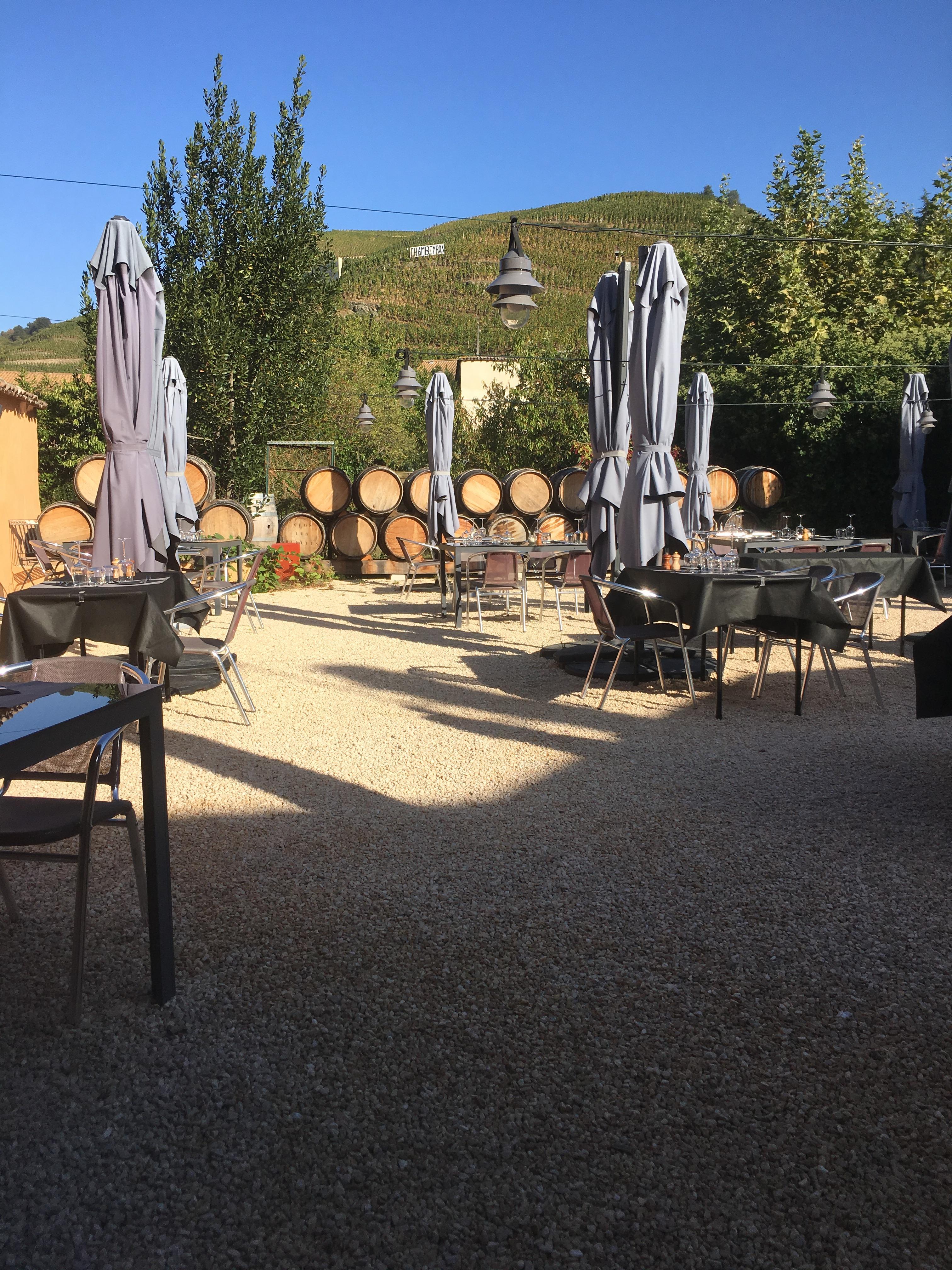 Terrasse avec vue sur le vignoble de Côte-Rôtie
